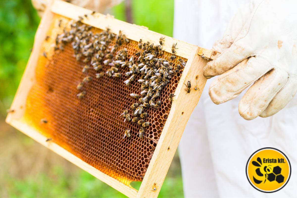 méhészruházat, méhészkesztyű