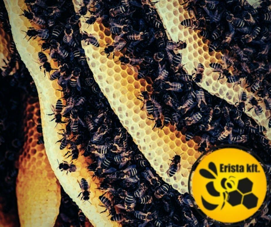 támogatott méhészeti gyógyszer erista.hu