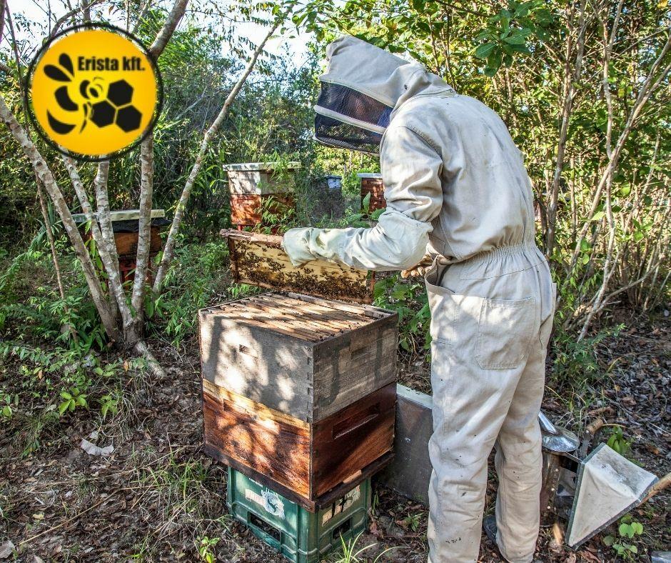 Méhészeti eszközök széles választéka.