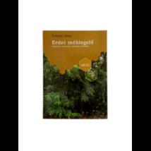 Méhészet Fritsch Ottó: Erdei Méhlegelő - Akác