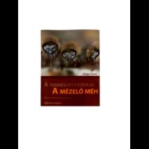 Méhészet Tautz-Heilmann - A természet csodája: A mézelő méh